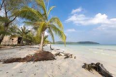 Playa tropical en Ko Rong con la onda del mar en la arena y la palmera Imágenes de archivo libres de regalías