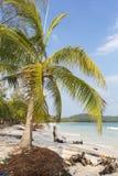 Playa tropical en Ko Rong con la onda del mar en la arena y la palmera Fotos de archivo