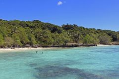 Playa tropical en la isla de Lifou, Nueva Caledonia Fotografía de archivo libre de regalías