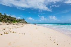 Playa tropical en la playa de la grúa de la isla caribeña, Barbados Fotos de archivo
