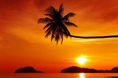 Playa tropical en la puesta del sol fotografía de archivo libre de regalías