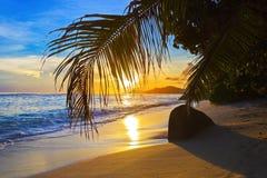 Playa tropical en la puesta del sol Fotos de archivo libres de regalías