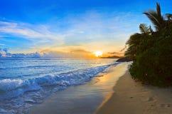Playa tropical en la puesta del sol Foto de archivo libre de regalías