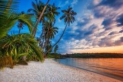 Playa tropical en la puesta del sol. Imagenes de archivo