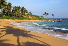 Playa tropical en la puesta del sol con las sombras de la palma Fotos de archivo libres de regalías