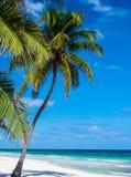 Playa tropical en México Imágenes de archivo libres de regalías