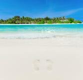 Playa tropical en Maldivas foto de archivo libre de regalías