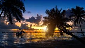Playa tropical en puesta del sol con las palmeras de la silueta Fotografía de archivo
