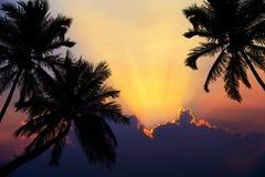 Playa tropical en puesta del sol con las palmeras de la silueta Fotos de archivo libres de regalías