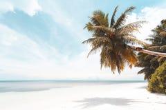 Playa tropical en Seychelles imagenes de archivo