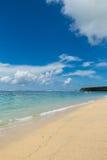 Playa tropical hermosa con la vegetación enorme imagen de archivo libre de regalías