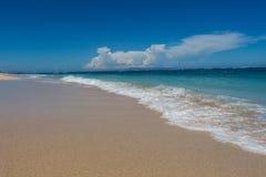 Playa tropical hermosa con la vegetación enorme Fotos de archivo libres de regalías