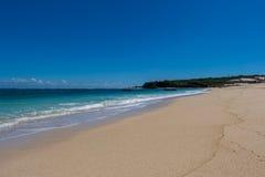Playa tropical hermosa con la vegetación enorme Foto de archivo libre de regalías