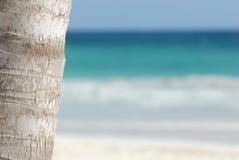 Playa tropical idílica   Foto de archivo libre de regalías