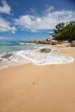 Playa tropical intacta en Sri Lanka Imagen de archivo libre de regalías