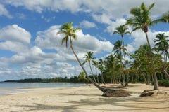 Playa tropical natural fotos de archivo