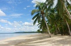 Playa tropical natural con las palmeras foto de archivo