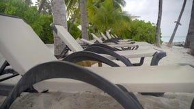 Playa tropical, salones en fila en la arena entre las palmeras cerca del agua en el centro turístico exótico almacen de metraje de vídeo