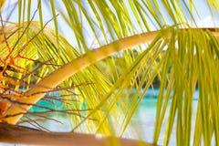 Playa tropical sin tocar de la foto en la isla de Bali Imagen horizontal primer Fotografía de archivo libre de regalías
