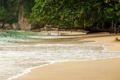 Playa tropical tranquila con la selva Foto de archivo libre de regalías