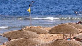 Playa vacía con los paraguas en Egipto en el fondo de Coral Reef en el Mar Rojo almacen de metraje de vídeo