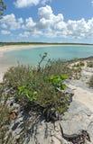 Playa vacía en la configuración tropical Foto de archivo