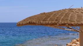 Playa vac?a con los paraguas en Egipto en el fondo de Coral Reef en el Mar Rojo almacen de metraje de vídeo