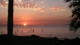 playa Venezuela Imagen de archivo libre de regalías