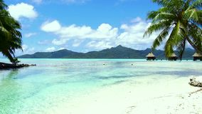 Playa y casas de planta baja tropicales en Polinesia francesa almacen de video
