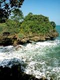 Playa y coral Imagen de archivo libre de regalías