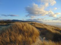 Playa y dunas pacíficas de la ciudad foto de archivo libre de regalías
