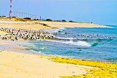 Playa y el agua Fotografía de archivo