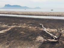 Playa y madera de la deriva en Sarawak Borneo Foto de archivo libre de regalías