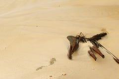 Playa y madera en paisaje Fotos de archivo