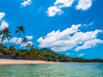 Playa y mar tropicales hermosos con la palmera del coco fotografía de archivo