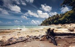 Playa y océano, República Dominicana Fotos de archivo libres de regalías