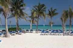 Playa y palmas de México Fotos de archivo libres de regalías