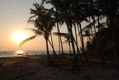 Playa y palmeras Imagen de archivo libre de regalías