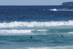 Playa y personas que practica surf de Bondi en Sydney Fotos de archivo