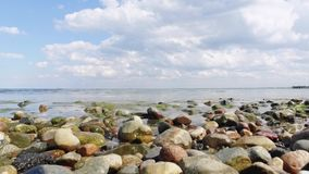 Playa y piedras almacen de video