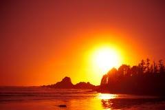 Playa y puesta del sol del bosque Imagenes de archivo