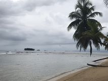 Playa y San Blas Islands de la palmera foto de archivo libre de regalías