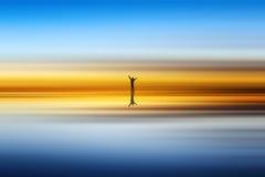 Playa y silueta del hombre imagen de archivo