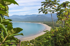 Playa y vegetación imagenes de archivo