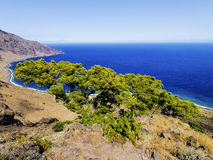Playas, νησί Hierro Στοκ Εικόνα