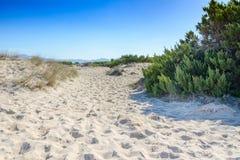 Playas arenosas baleares Foto de archivo libre de regalías