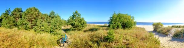 Playas de protección del bosque del mar Báltico Fotos de archivo libres de regalías