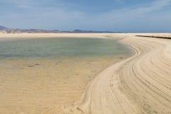 Playas de Sotavento, Fuerteventura. The famous lagoon at Playas de Sotavento, Fuerteventura during low tide Royalty Free Stock Images