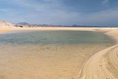 Playas de Sotavento, Fuerteventura. The famous lagoon at Playas de Sotavento, Fuerteventura during low tide Stock Photo