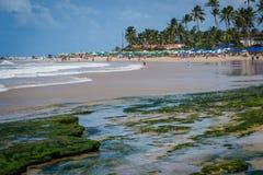 Playas del Brasil - Oporto de Galinhas Imágenes de archivo libres de regalías